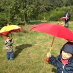 gite-ecolo-bebe-bretagne-enfants-famille-foret-enchantee-magique-promenade-parapluies-5811q50