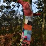 gite-ecolo-bebe-bretagne-famille-foret-enchantee-magique-arbre-habille-tricot-2204q50