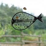 gite-ecolo-bebe-bretagne-forge-poisson-fenetre-013q50