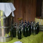 gite-ecolo-bebe-bretagne-lavilleheleuc-champagne-sureau-DSC_6238