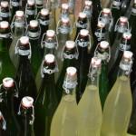 gite-ecolo-bebe-bretagne-lavilleheleuc-champagne-sureau-DSC_6240