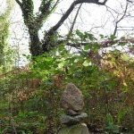 gite-ecolo-bebe-bretagne-lavilleheleuc-champignon-lvh-cailloux-pb204750