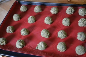 gite-ecolo-bebe-bretagne-lavilleheleuc-cote-cuisine-cookies-vitaminees-DSC_4535