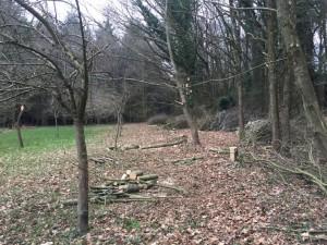 gite-ecolo-bebe-bretagne-lavilleheleuc-jardin-IMG_5292