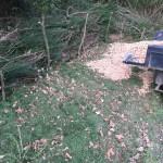gite-ecolo-bebe-bretagne-lavilleheleuc-jardin-IMG_5340