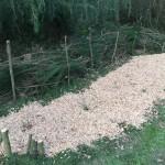 gite-ecolo-bebe-bretagne-lavilleheleuc-jardin-IMG_5342