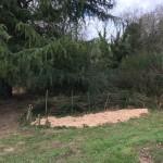 gite-ecolo-bebe-bretagne-lavilleheleuc-jardin-IMG_5344