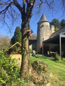 gite-ecolo-bebe-bretagne-lavilleheleuc-jardin-IMG_5478