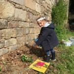 gite-ecolo-bebe-bretagne-lavilleheleuc-jardin-IMG_5488