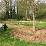 gite-ecolo-bebe-bretagne-lavilleheleuc-jardin-IMG_5494