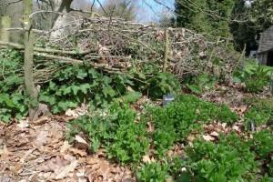 gite-ecolo-bebe-bretagne-lavilleheleuc-jardin-P1290397