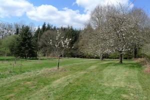 gite-ecolo-bebe-bretagne-lavilleheleuc-jardin-P1290403