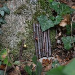 gite-ecolo-bebe-bretagne-lavilleheleuc-maison-fees-DSC_8454