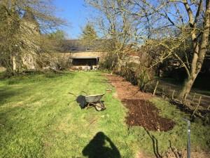 gite-ecolo-bebe-bretagne-lavilleheleuc-permaculture-framboisiers-IMG_0762