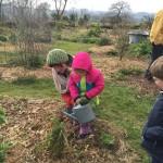 gite-ecolo-bebe-bretagne-lavilleheleuc-permaculture-patureeschenes-IMG_0552