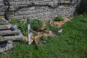 gite-ecolo-bebe-bretagne-lavilleheleuc-permaculture-pgnon-sud-DSC_1159