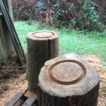 gite-ecolo-bebe-bretagne-lavilleheleuc-ruches-moai-IMG_5562