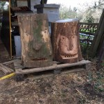gite-ecolo-bebe-bretagne-lavilleheleuc-ruches-moai-IMG_5602