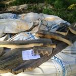gite-ecolo-bebe-bretagne-lavilleheleuc-totem-Plan-IMG_4558
