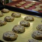 gite-ecolo-bebe-bretagne-lavilleheleuc-vacances-cookies-DSC_4240