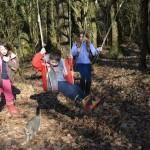 gite-ecolo-bebe-bretagne-lavilleheleuc-vacances-foret-DSC_4176