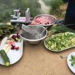 gite-ecolo-bretagne-lavilleheleuc-jardins-fontaine-doigts-pot-IMG_1137