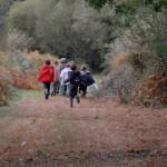 gite-ecolo-bretagne-lavilleheleuc-vacances-chassetresor-dsc_8833