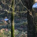 lavilleheleuc-gite-ecolo-bebe-bretagne-maison-fees-DSC_3725