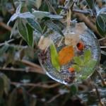 lavilleheleuc-gite-ecolo-bebe-bretagne-sculpture-glace-DSC_3689